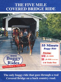 Buggy Rides Lancaster County PA - we did 55 min tour w/ a pit stop for drinks and snacks