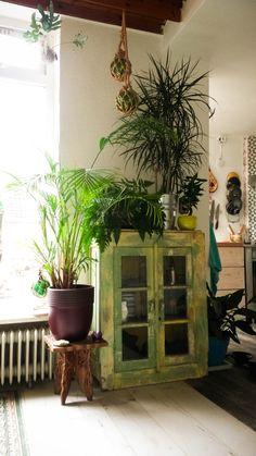 bohemian plants, plant corner - mi casita Indoor Plant Pots, Potted Plants, Houseplants, Outdoor Spaces, Outdoor Gardens, Greenery, Beach House, Bloom, Tropical