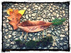 RENARDEAU • 10 octobre 2015 • Réalisé par ma puce (8 ans) inspirée par son mag. #astrapi & pour le Challenge #flowleaf2015 de @flowmagazine_fr  #feuille #leaf #nature #Carquefou #automne #autumn #flowmagazine #flowfrance #flow #flowish #igernantes #igersfrance  #bd_mobile #bd_france #youmustsee #icu_france #loves_france_ #ig_France #gf_france #igersrecommendation