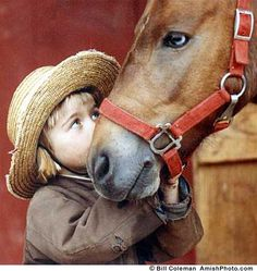 Amish  Boy and Horse