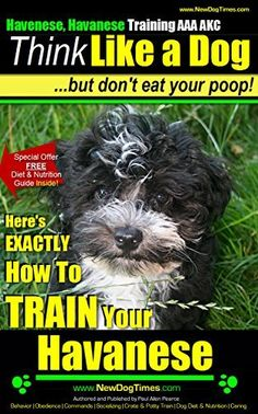 Havanese, Havanese Training AAA AKC | THiNK Like a Dog, But Don't Eat Your Poop! | Havanese Breed Expert Training |: Here's EXACTLY HOW To Train Your Havanese Dog Training Books, Training Your Dog, Dog Breeds List, Choosing A Dog, Havanese Puppies, Nutrition Guide, How To Train Your, New Puppy, Buy Books