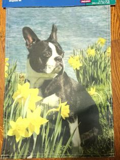 NEW BOSTON TERRIER GARDEN FLAG Daffodil Flowers On Lake Holiday Gift