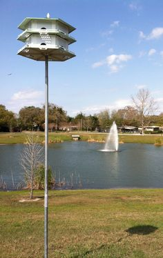 1000 images about crealde school of art on pinterest sculpture garden the winter and winter for Winter garden recreation center