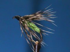 The Global FlyFisher - Olive Acrylic and Partridge Wet Fly - Hook: 2xl Nymph #12 - #18  Thread: Black Body: Olive Acryliic Hair Band Hackle: Partridge - fly fishing video channel