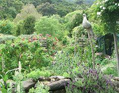 Google Image Result for http://www.mooseyscountrygarden.com/gardening-articles/cottage-garden-rocks.jpg