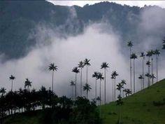 Fotos Salento Quindio Turismo - YouTube