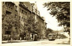 1910-es évek. Aréna - Dózsa György út.