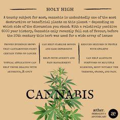 Medical Benefits of Cannabis Holistic Medicine, Natural Medicine, Herbal Medicine, Medical Benefits Of Cannabis, Medical Marijuana, Healing Herbs, Medicinal Plants, Natural Health Remedies, Herbal Remedies