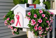 Creative mail box planters.  They fit over your existing mail box.