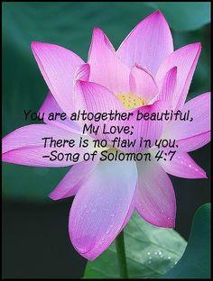 Such a pretty verse.