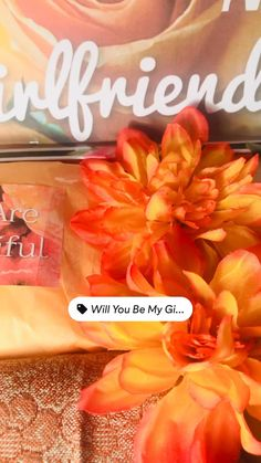Will You Be My Girlfriend, Birthday Gifts For Girlfriend, Girlfriend Gift, Couples In Love, You Are Beautiful, Couple Goals, Relationship Goals, Girlfriends, Random