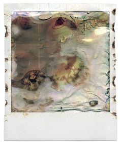 Photographs by Oliver Blohm - Microwavable Polaroid