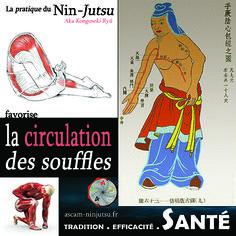 ascam ninjutsu - Tradition, Efficacité et Santé - 2017
