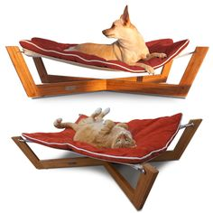 The Bambú Hammock has a solid bamboo frame and stain-resistant ultrasuede cushion. $199.99 from Pet Lounge Studios
