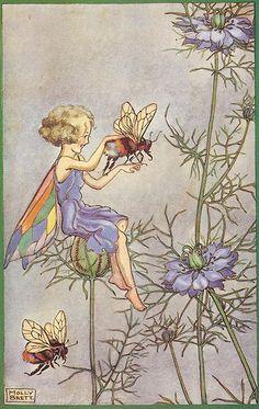 """Fairy and bee on """"Bees Balm"""" Monarda Blossoms ~ Molly Brett"""
