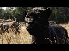 Il Libro della Giungla - Teaser Trailer Italiano Ufficiale | HD - YouTube
