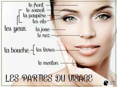 Aprender Francês - les parties du visage