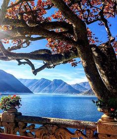 Lake Como is stunning! Imagine a secret wedding here Cool Places To Visit, Places To Travel, Places To Go, Lac Como, Wonderful Places, Beautiful Places, Comer See, Lake Como Italy, Italian Lakes