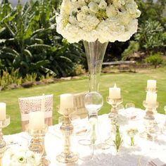 Anna Chair Cover & Wedding Linens Rental Burnaby Bc Office Backrest Cushion Wildflower Linen By Youngsong Martin Wildflowerlinen On Pinterest A Hawaiian Backdrop Adds To This Clean And Classy Tablescape Designed Whiteorchidwedding Rentalswhite Orchidshawaii Weddinganna