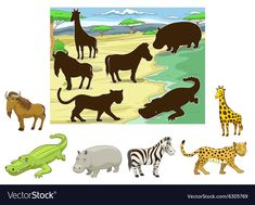 Match animals to their shadows educational game Vector Image Toddler Learning Activities, Animal Activities, Montessori Activities, Book Activities, Wild Animals Pictures, Animal Pictures, Animals Name With Picture, Farm Animals Preschool, Quiet Book Templates
