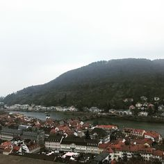 A view of Heidelberg from the Heidelberg castle.