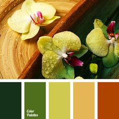Color Palette #2928 | Color Palette Ideas | Bloglovin'