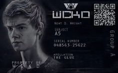 Side note: this is a fan edit. Newt's last name and technical real first name are never mentioned in the books. All that's mentioned is his subject name: Newt (no D. Wright is ever mentioned). Maze Runner Funny, Maze Runner Thomas, Maze Runner The Scorch, Maze Runner Cast, Maze Runner Movie, Dylan Thomas, Dylan O'brien, Maze Runner Trilogy, Maze Runner Series