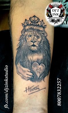 lion the father of the family ... hero of all boys