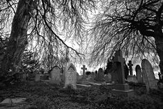 10 Best Ghost Tours in the U. - Spooky Haunted Tours Near Me Haunted Tours, Most Haunted, Gif Terror, The Graveyard Book, Old Cemeteries, Graveyards, Gifs, Ghost Tour, Bizarre