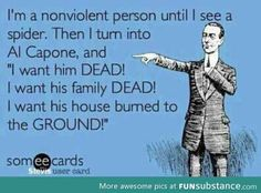 """I'm a nonviolent person until I see a spider. Then I turn into Al Capone, and """"I want him DEAD! I want his family DEAD! I want his house burned to the GROUND!"""" (Man, I hate spiders. Love Quotes Funny, Funny Quotes For Teens, Funny Quotes About Life, Funny Love, Love Quotes For Him, Hilarious Sayings, Seriously Funny, Sassy Quotes, Funny Signs"""