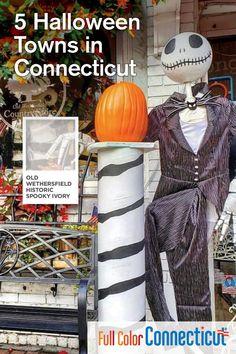 Halloween Celebration, Halloween Town, Halloween Treats, Happy Halloween, Halloween Decorations, Halloween Havoc, Favorite Holiday, Holiday Fun, Trick Or Treat