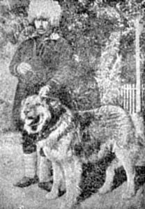 """Caucassian Ovcharka. El legendario georgiano Nagashi """"Topush"""" (1950) antcestor de la mayoría de las perreras URSS"""