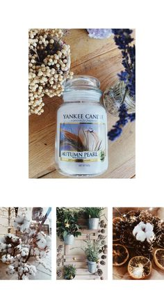 Natural Christmas, Holy Night, Fragrance, Christmas Decorations, Candles, Photo And Video, Nature, Diy, Instagram