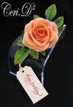 www.ceridz.co.uk Craft Flowers, Flower Crafts, Sugar Paste Flowers, Sugar Craft, Cake Cookies, Decor, Flowers, Decoration, Decorating