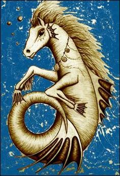 Mythological Hippocampus Picture, Definition, and Fantasy Creatures, Mythical Creatures, Seaside Art, Dragon Images, Curious Creatures, Cryptozoology, God Pictures, Merfolk, Greek Mythology