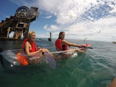 Ultimate Australian Tour Packages: Great Barrier Reef 5 Day and 6 Day Package Tours ~ Australian Sunset Safaris