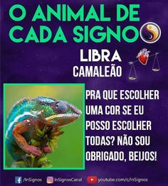Read Animal De Cada Signo from the story Signos by Sexytaekookv (𝙶𝙰𝚃𝙸𝙽𝙷𝙰) with reads. Zodiac Signs, Cancer, Wattpad, Funny, Animals, Barbie, Bullet Journal, Wallpaper, All About Libra