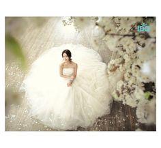 Korean Concept Wedding Photography