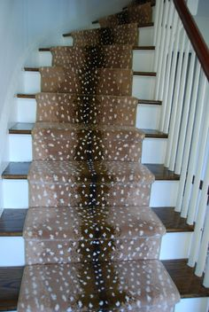 103 Best Antelope Carpet Images In 2020 Carpet Stairs