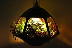 The limited edition Vicky Lamp designed Netherlands-based studio Jose de la O, is both a hanging terrarium and a Victorian-style light. It uses a special bulb that provides an increased radiation on the blue spectrum, helping plants thrive. #plants #garden