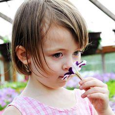 Toddler Allergies Versus Toddler Colds