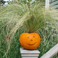Fall Decorations - Pumpkin Planters for Fall Decorations #pumpkinplanter