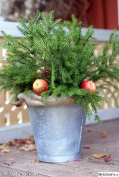 Outdoor Christmas decoration - # free # decoration # in # Christmas decoration Christmas Feeling, Christmas Porch, Christmas Love, Country Christmas, Winter Christmas, Christmas Wreaths, Christmas Crafts, Christmas Christmas, Outdoor Christmas Decorations