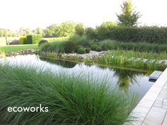 Natural pool @ ecoworks.be