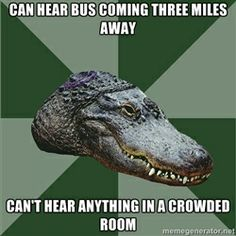"Aspie Alligator: ""Can hear bus coming three miles away. Can't hear anything in a crowded room."""
