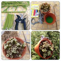 My DIY Mason Bee Hotel inspired by HGTV 1. Cut bamboo to desired lengths 2. Line bottom of small pot with modeling clay and insert cut bamboo 3. Fill in spaces around bamboo with moss 4. Tie raffia securely around pot and use to hang near blooms!!