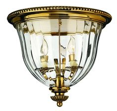 Lighting for Home or Commercial - Chandeliers, Ceiling Fans, Light Fixtures - Williams Lighting Galleries, Roanoke, Va.