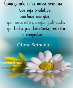BLOG DO RADIALISTA EDIZIO LIMA: Página =Tolerância Zero Frases Dr, Mark Kay, Portuguese Quotes, Good Morning Quotes, Happy Day, Inspirational Quotes, Blog, Instagram, Good Night Msg
