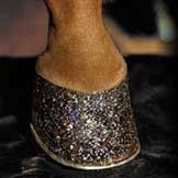 OH MY.....Holiday Gifts for Horses – Gifts for Horse People   petMD