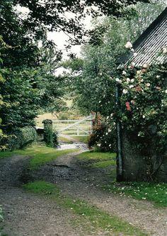Irish farm County Carlow. Ireland